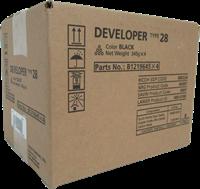 Sviluppatore Ricoh 888224