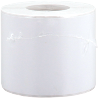 Etichette Epson High Gloss Label S045537